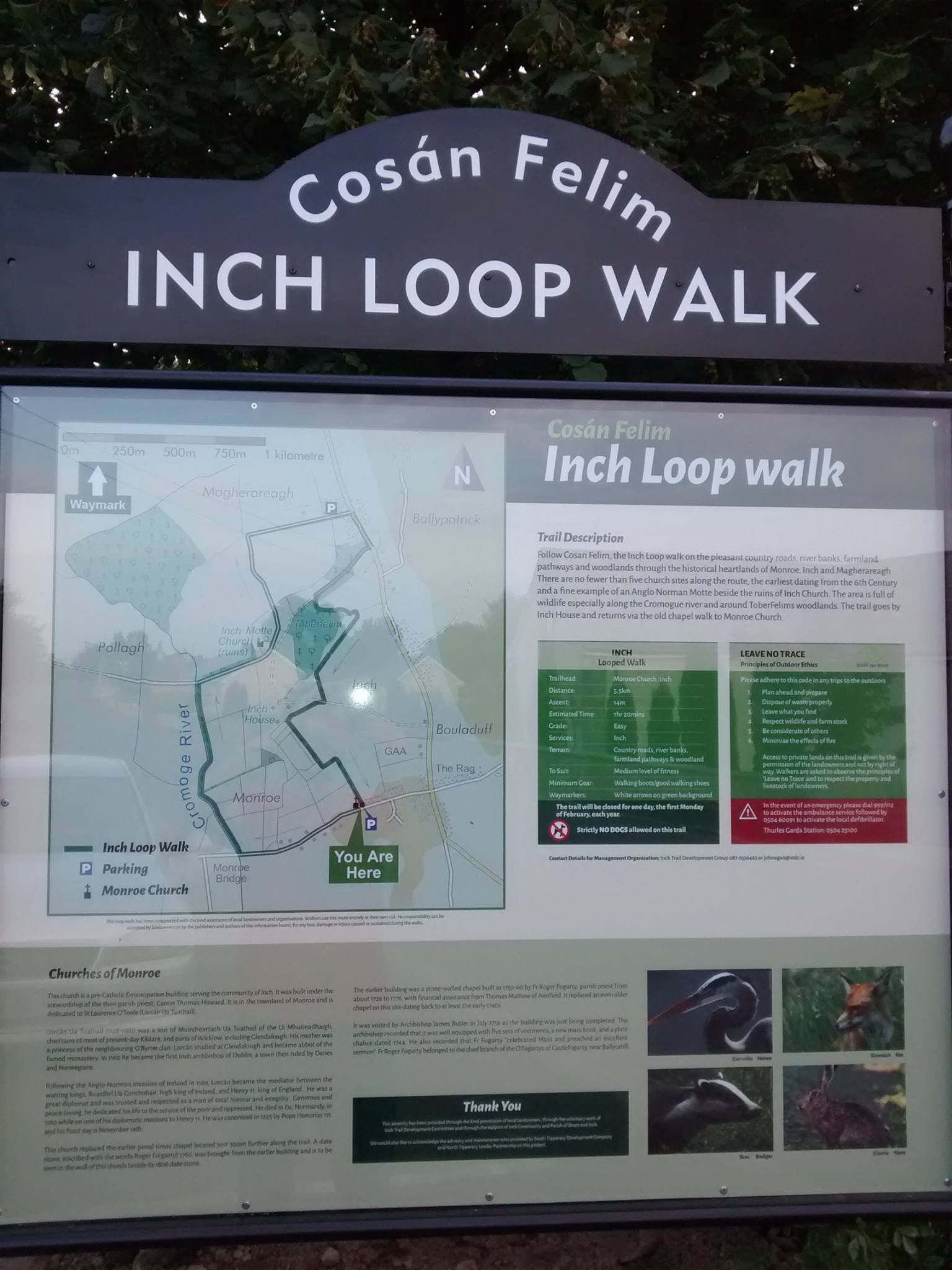 Inch Looped walk poster